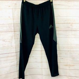 Adidas Climacool Joggers w/ green stripes, EUC.